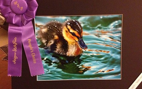 Teacher Wins State Fair Photo Award