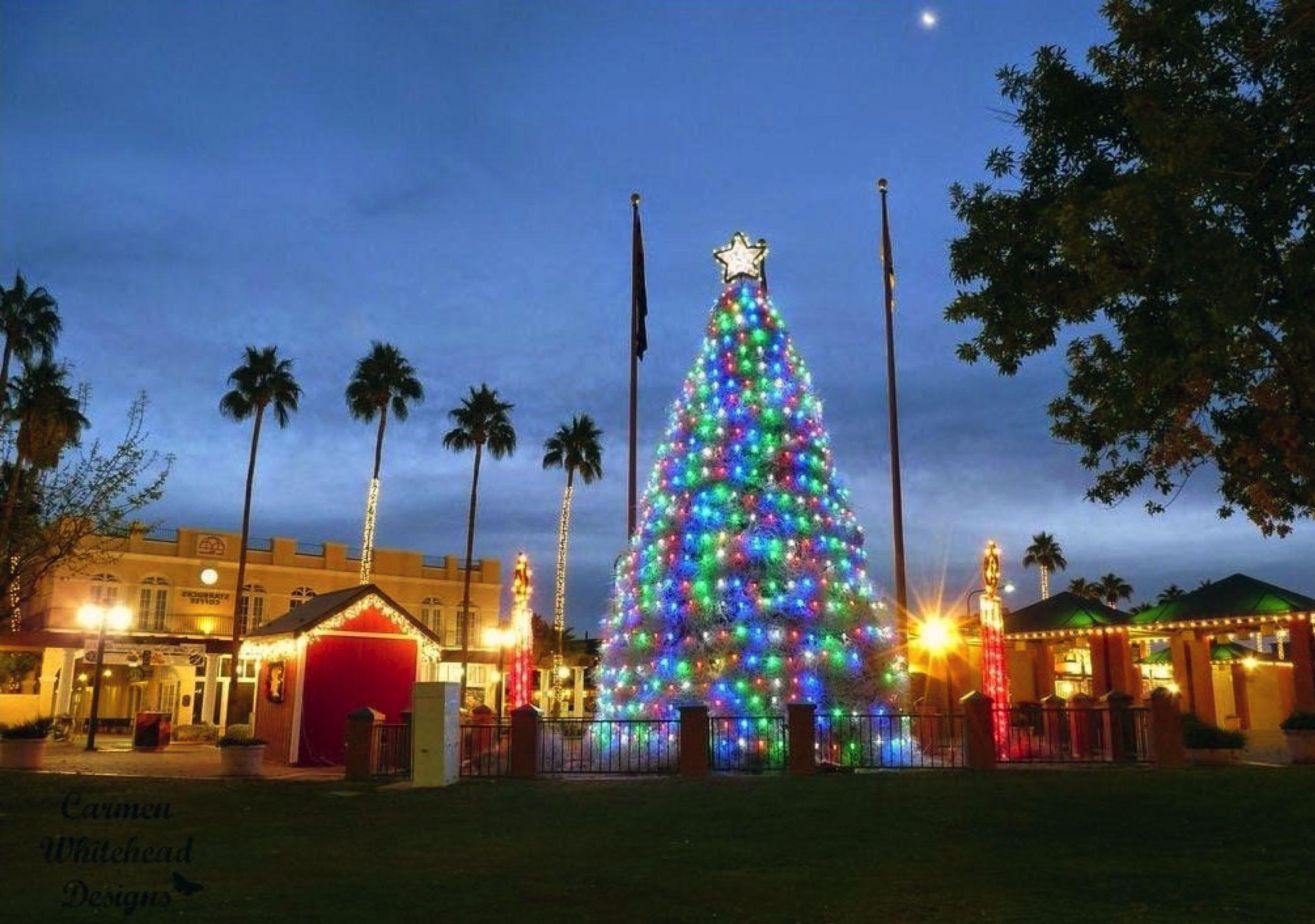 Tumbleweed Tree Lighting Ceremony