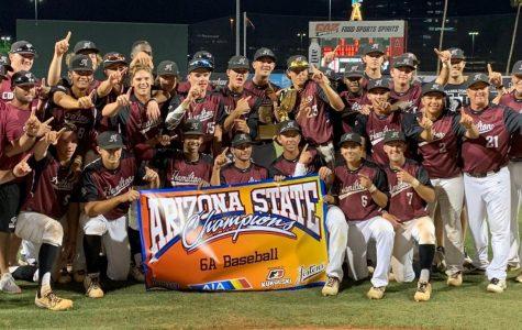 Baseball Wins State!