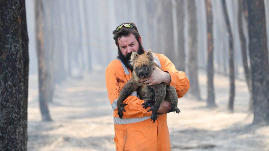 Australia+Wildfire