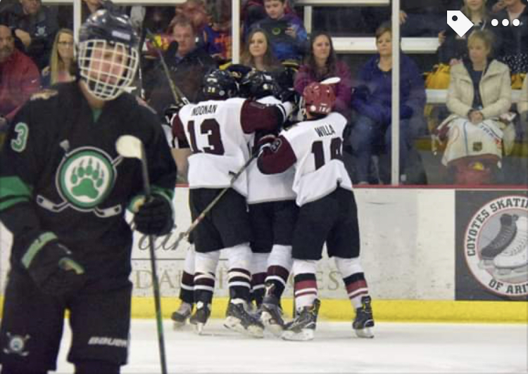 Hockey knocks off Basha/Perry, advance to Semifinals