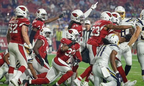 Cardinals Lose to the Patriots