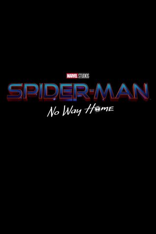 The Long Awaited Spider-Man- No Way Home Trailer is Out